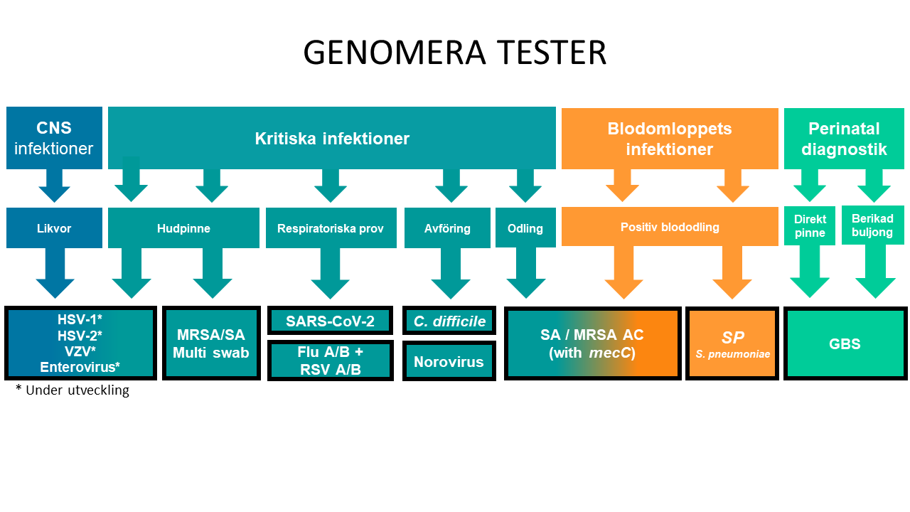 Genomera test